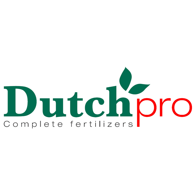 HOME DUTCH PRO