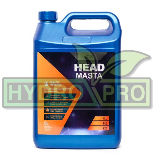 CX Head Masta